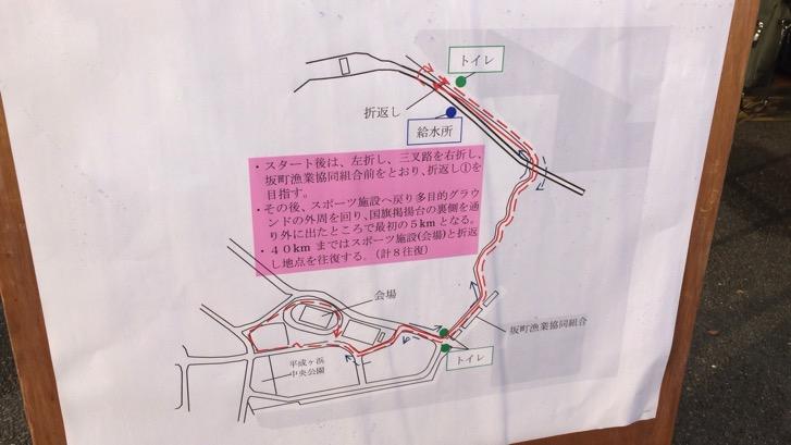 161121 hiroshima marathon 32