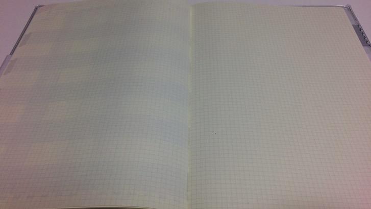 161107 gantt chart diary 18