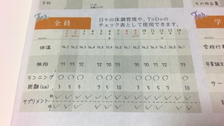 161107 gantt chart diary 6