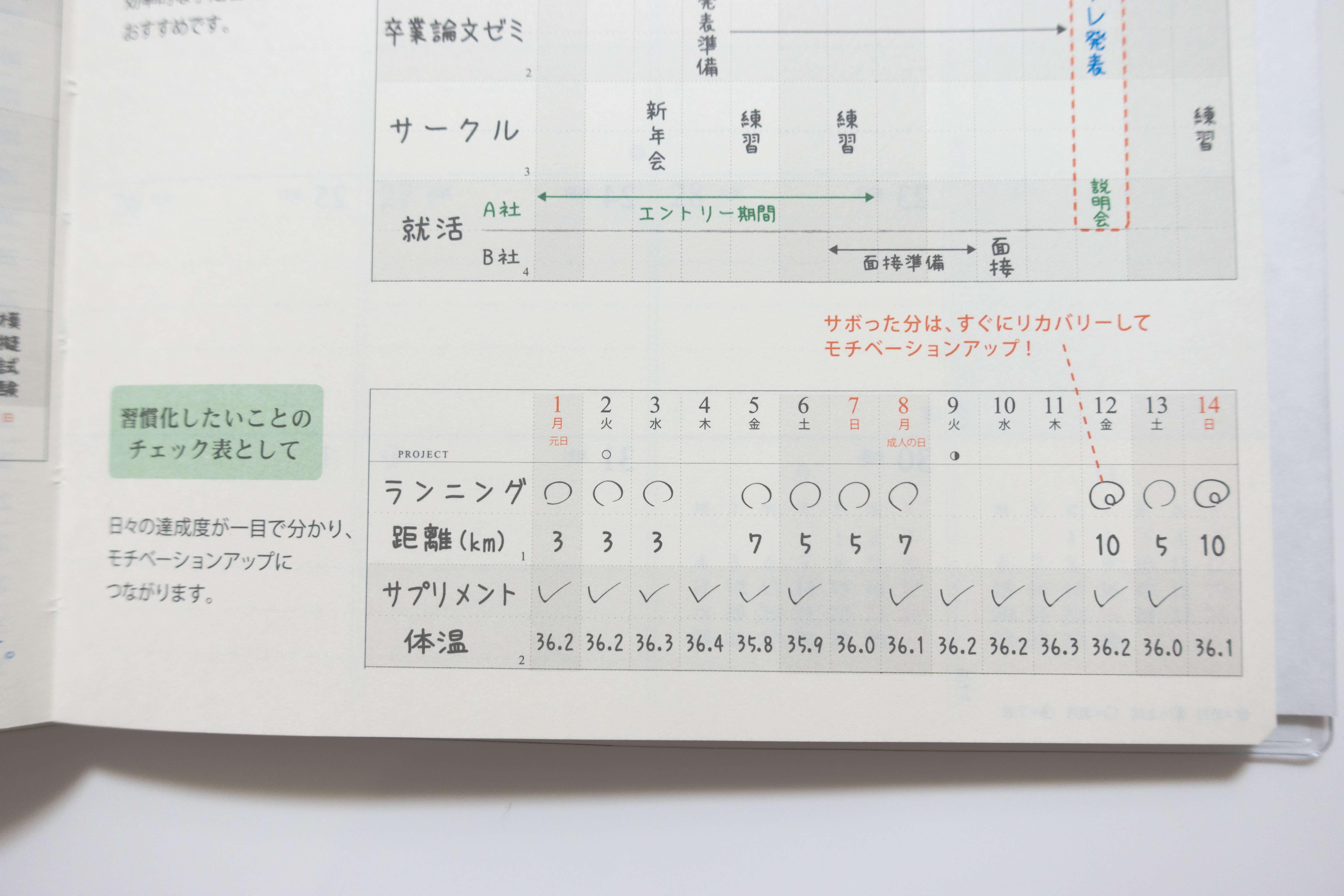 180107 gant chart diary 09
